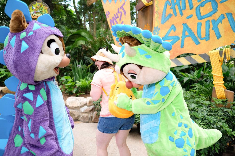 Dino Chimpmunk Meet and Greet
