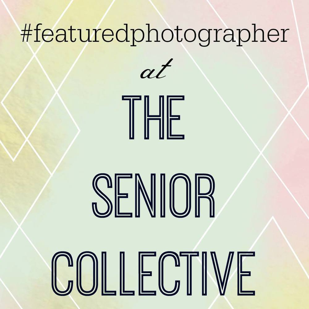 The Senior Collective
