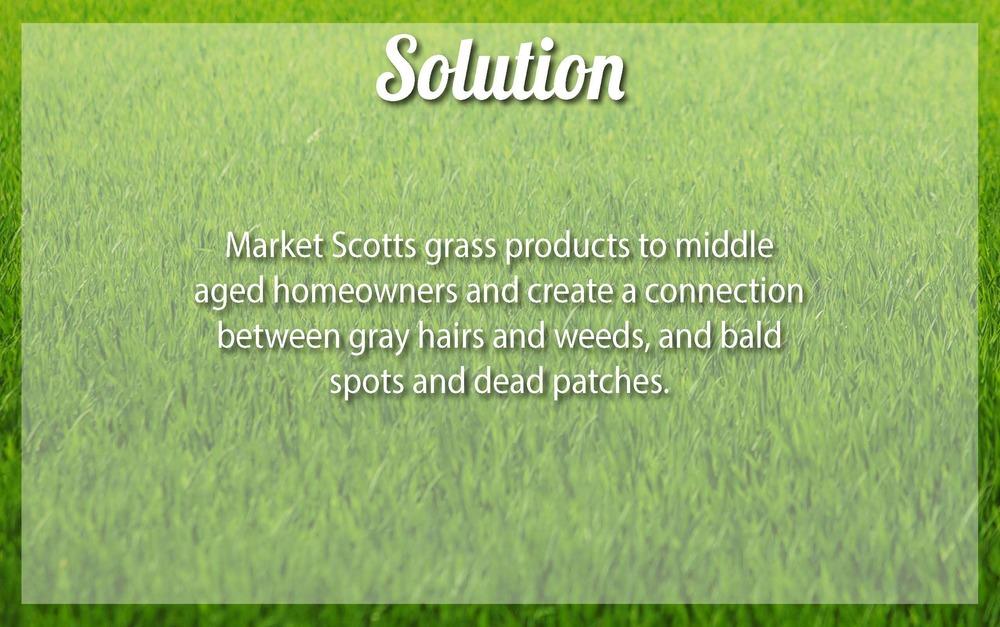 Scotts v4_Page_04.jpg