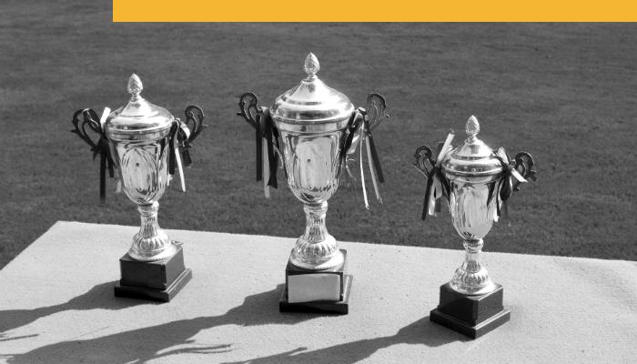 Trophies Branded 3.png