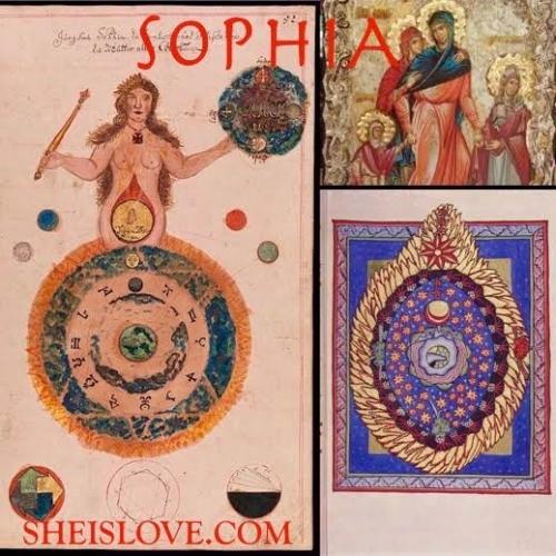 SOPHIA final final collage.jpg