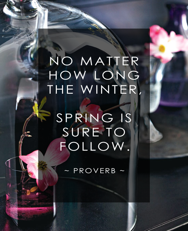 No matter how long the winter, spring is sure to follow. -Proverb