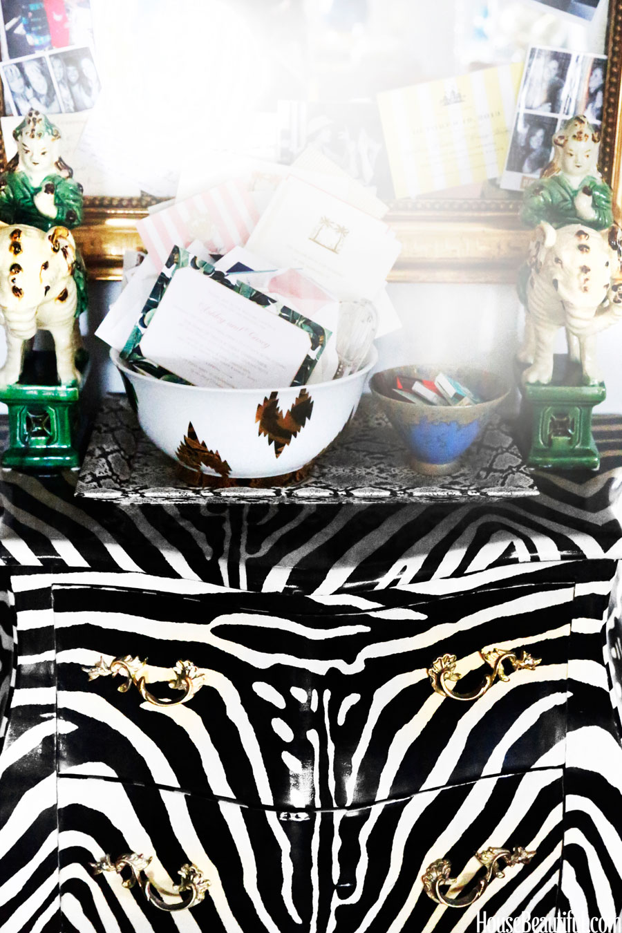 Lindsey Coral Harper's zebra and malachite accessories