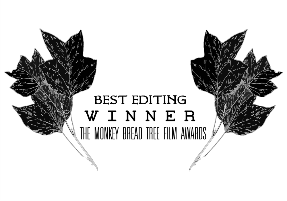 Winner of Best Editing across all categories for  Thick Air .