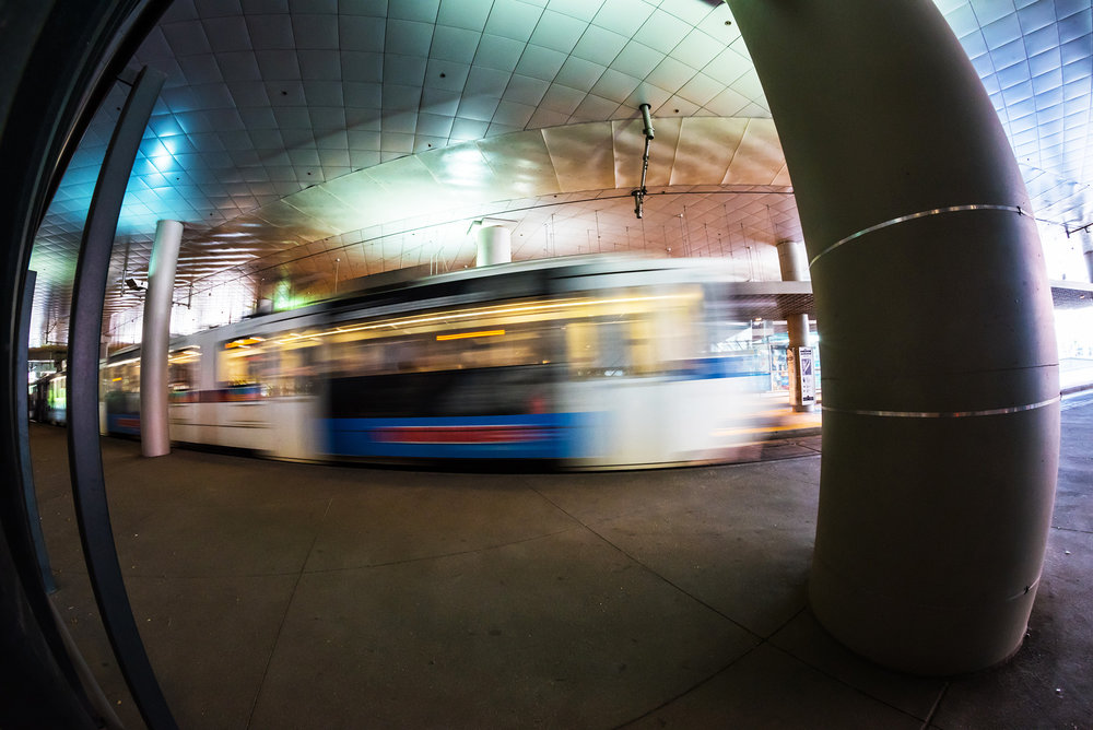 lightrail DSC_5448.jpg