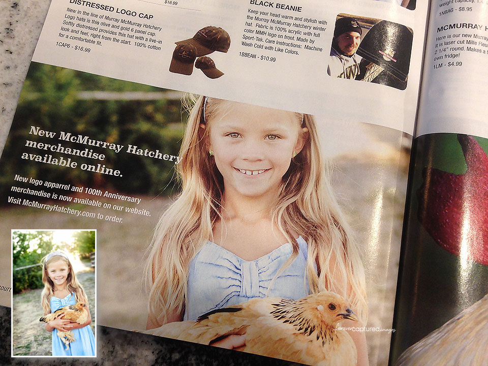 Murray McMurray Hatchery 100th Year Catalog