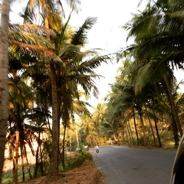 Goa is paradise! #youfollowthefilm #films #documentary #india #goa #goan #adoptee #adoption #indie #indiefilms #paradise #rickshaw  (at Goa, India)