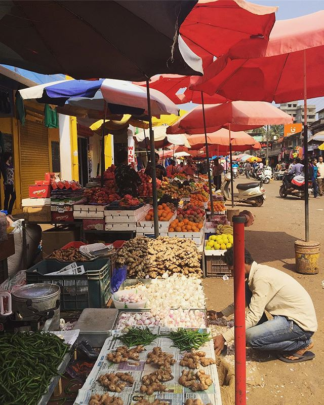 Mapusa Market . . . #youfollowthefilm #mapusa #goa #ginger #freshveggies #travel #vegan #vegetarian #hinduism #rupees #umbrellas #hotAF