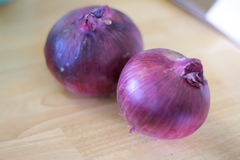 simple living fall feature art of preserving red onion