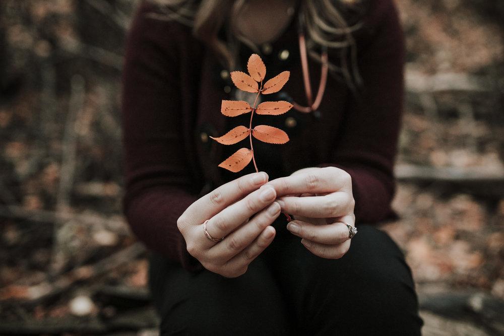 bri-leaf.jpg