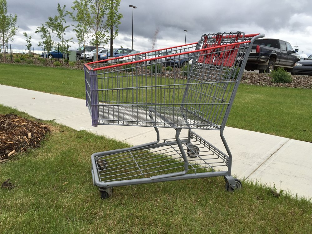 Shopping cart.JPG