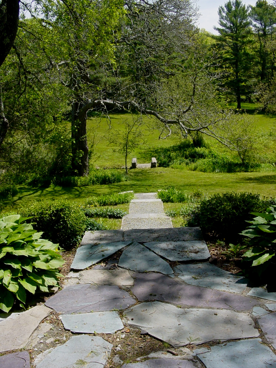 steps to lower lawn.JPG