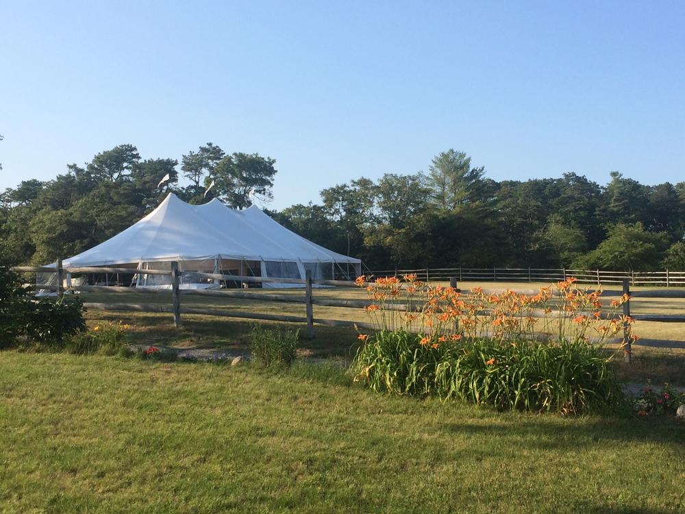 tent in field.jpg