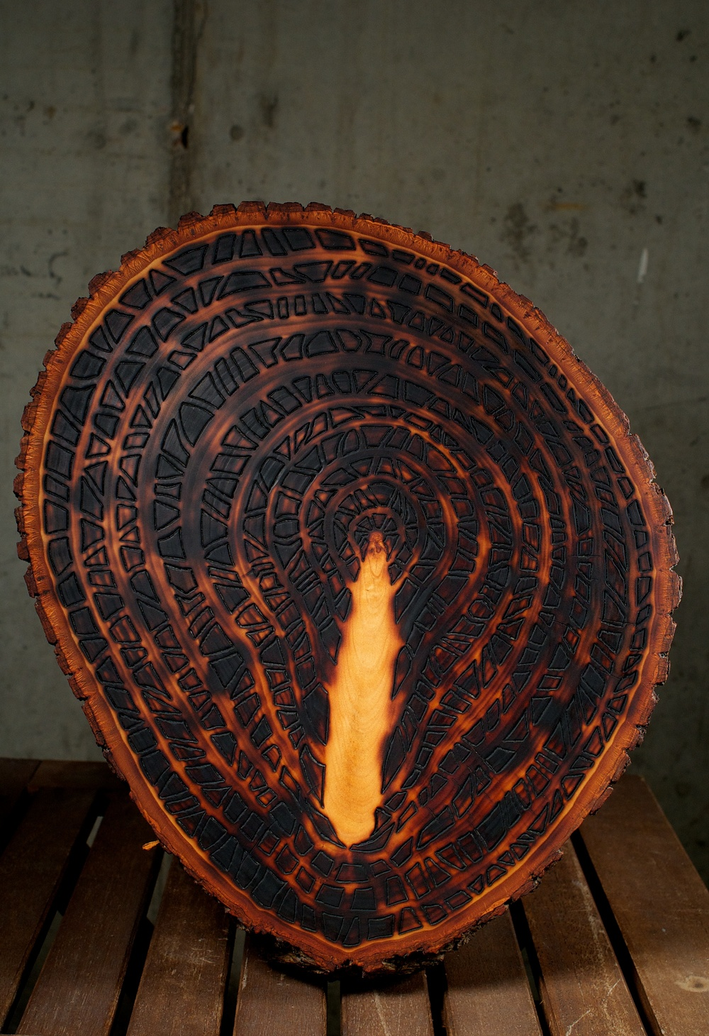 Light Inside Dark    (2015)   Wood Burning On Bass Wood Bark Slab   14 in x 2 in x 12 in   $300.00    For Inquiry Email bzartsgallery@gmail.com