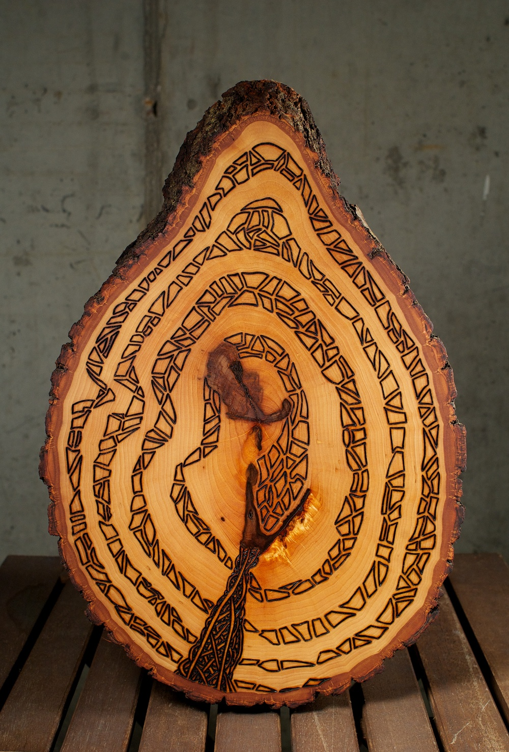 The Serpent    (2015)   Wood Burning On Bass Wood Bark Slab   15 in x 2   ½   in x 10   ½   in   $300.00    For Inquiry Email bzartsgallery@gmail.com