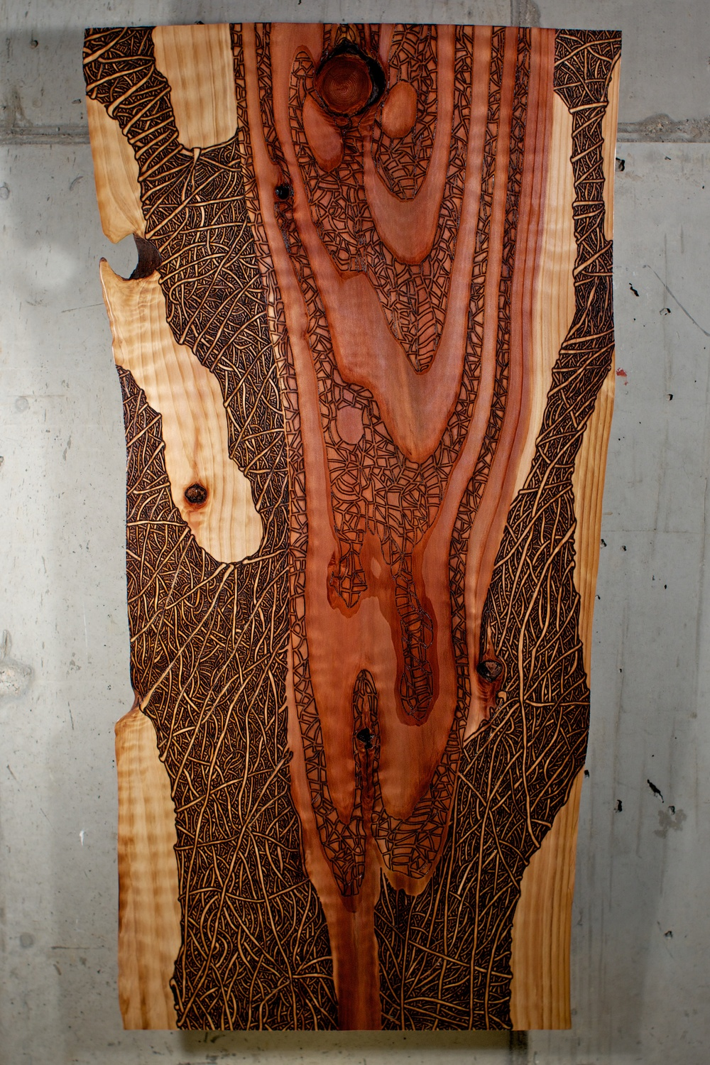 Red Wood  (2016)   Wood Burning On Red Wood Live Edge Slab   43 in x 2 ½ in x 21 ½ in