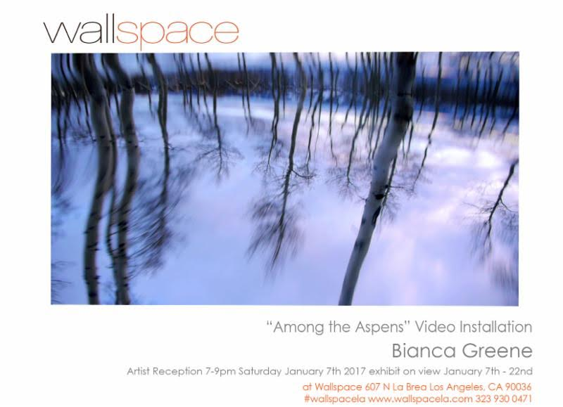 Wallspace Opening Flyer.jpg