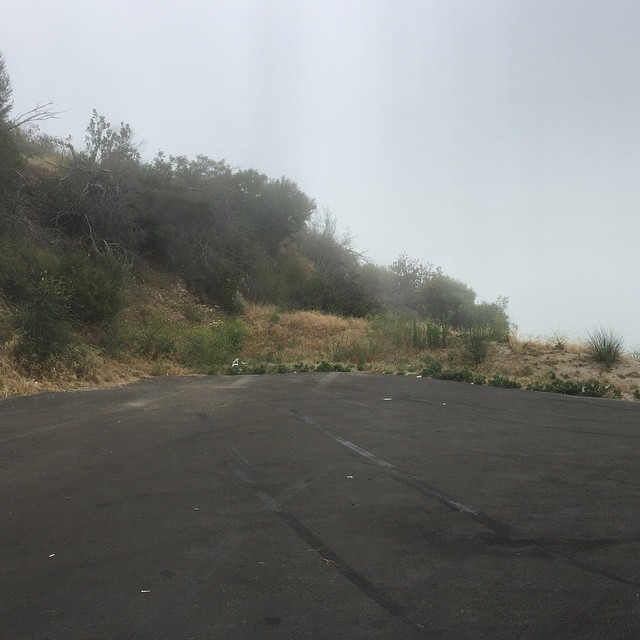 Fog freaks me out. Especially when it's trying to suffocate me. #fog #filmmaking #locationscouting #90sthriller #tiremarks
