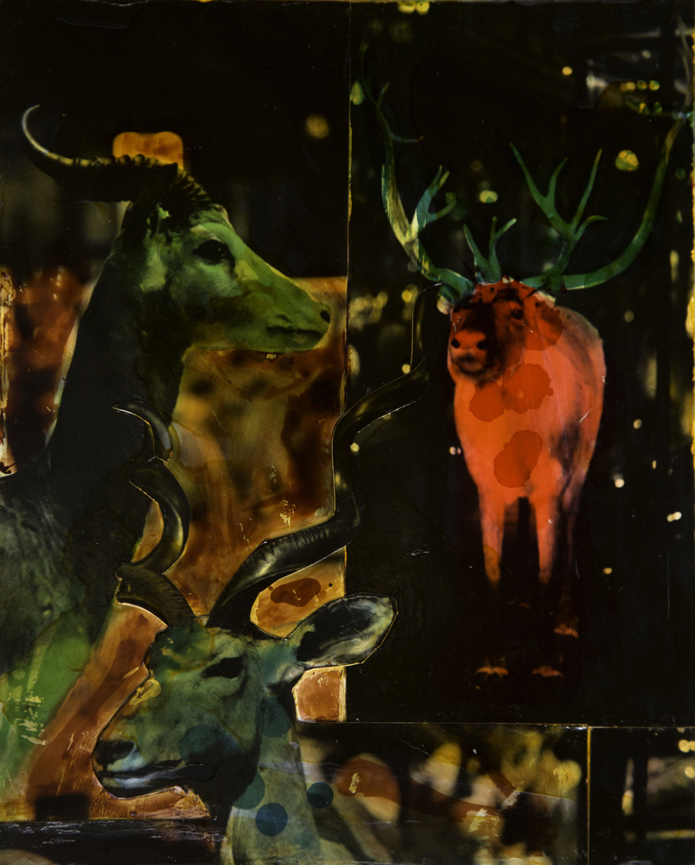 """Horns à Antlers"" (2016)"