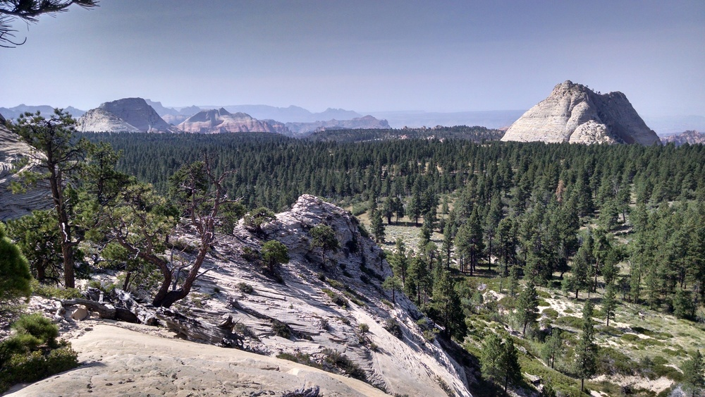 Saddle view south. Pine Valley Peak picture right.
