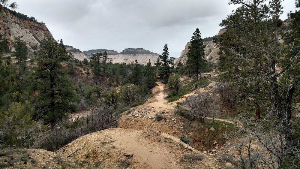 East Rim Trail