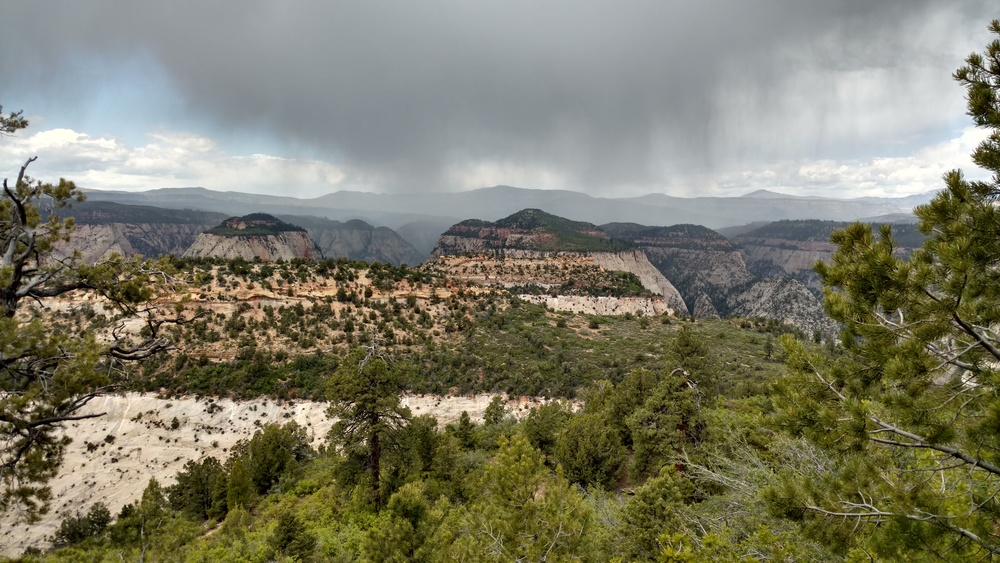 Rain in Zion Narrows