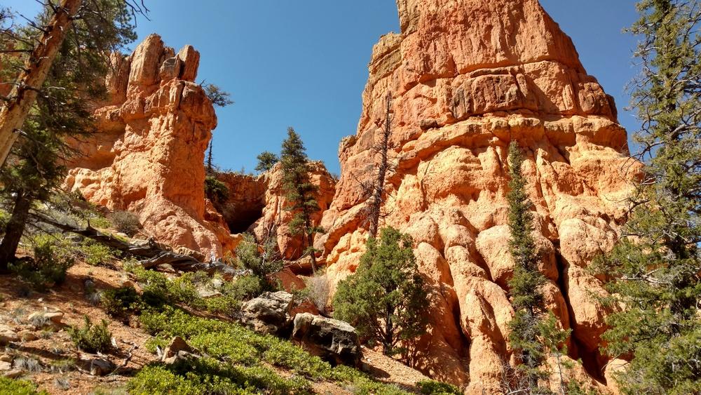 Losee Canyon