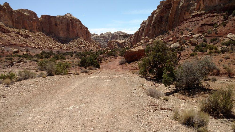Road hiking toward Little Wild Horse Canyon