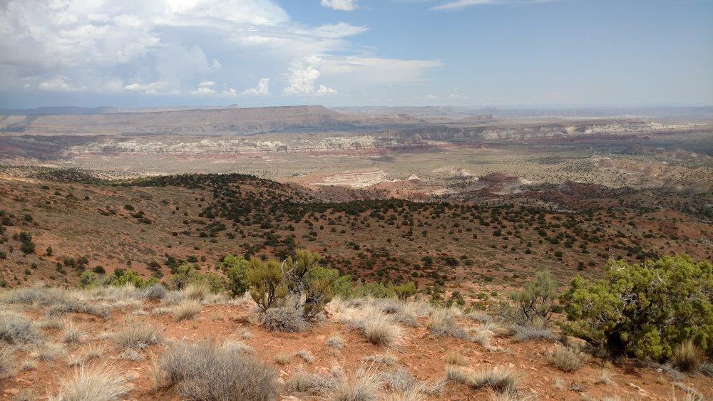 Trail view north northeast