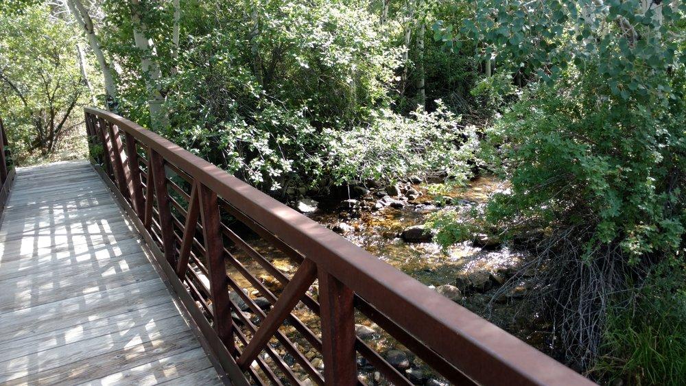 Pole Canyon walking bridge