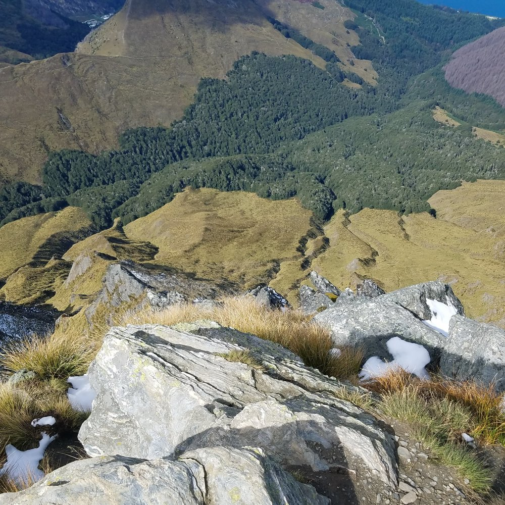 A look down the western face of Ben Lomond