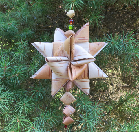 Birch bark star.jpg