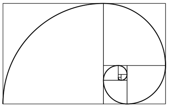 As the spiral grows, it gets wider every 1/4 turn by a factor of 1.618 commonly denoted by the Greek letter Phi (φ).