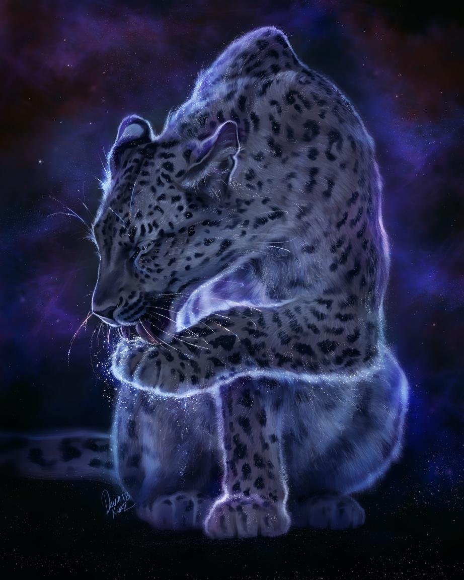 StarryLeopard_FSM.jpg