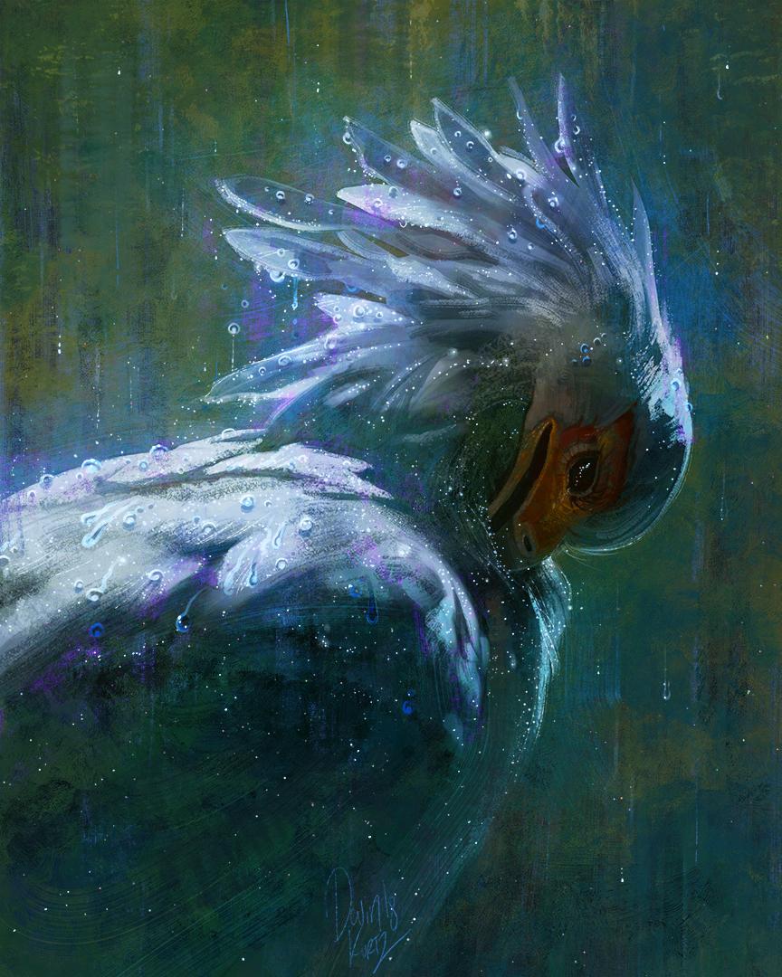 StarryBird_UpdateSM.jpg