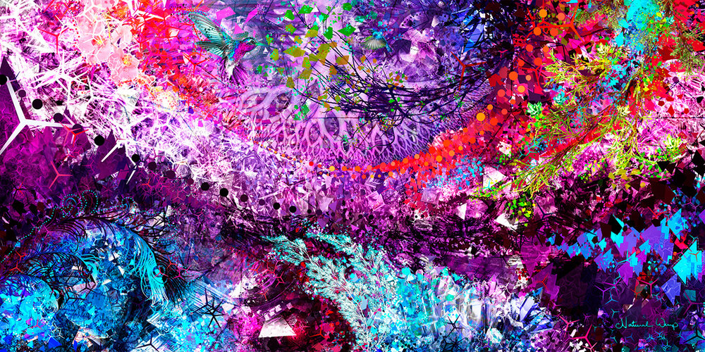 Natural Warp :   Blossoms of the Dark Crystal