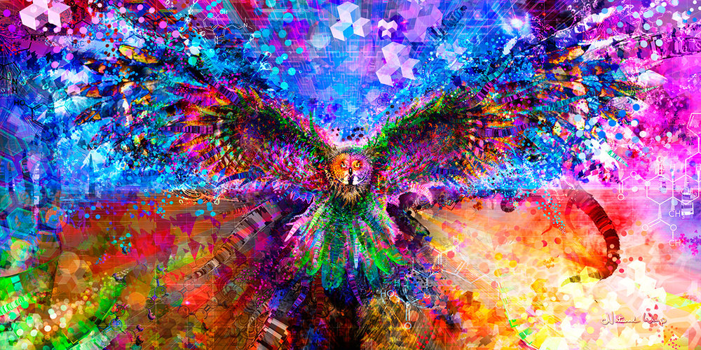 Natural Warp: Enter Your Mind