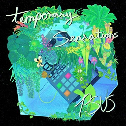 P.SUS :    Temporary Sensations