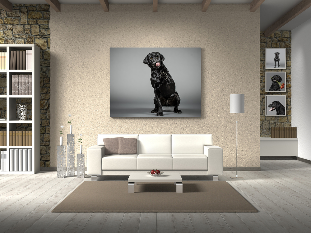 wall-portrait-dog
