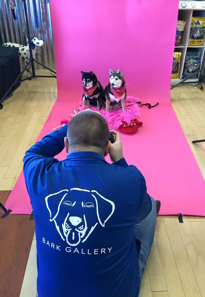 Valentine's Day Portraits will be a regular event at Bark Gallery. Follow Bark Gallery for future events!