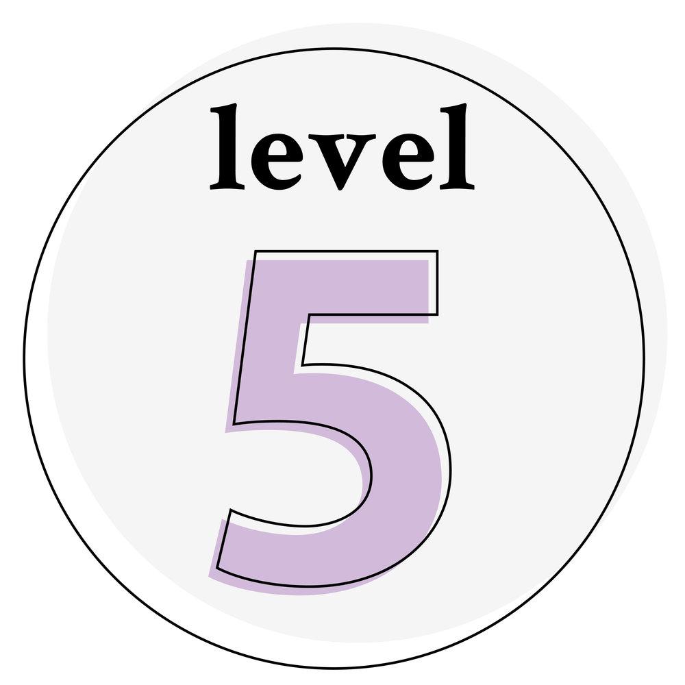 icon-level-5.jpg