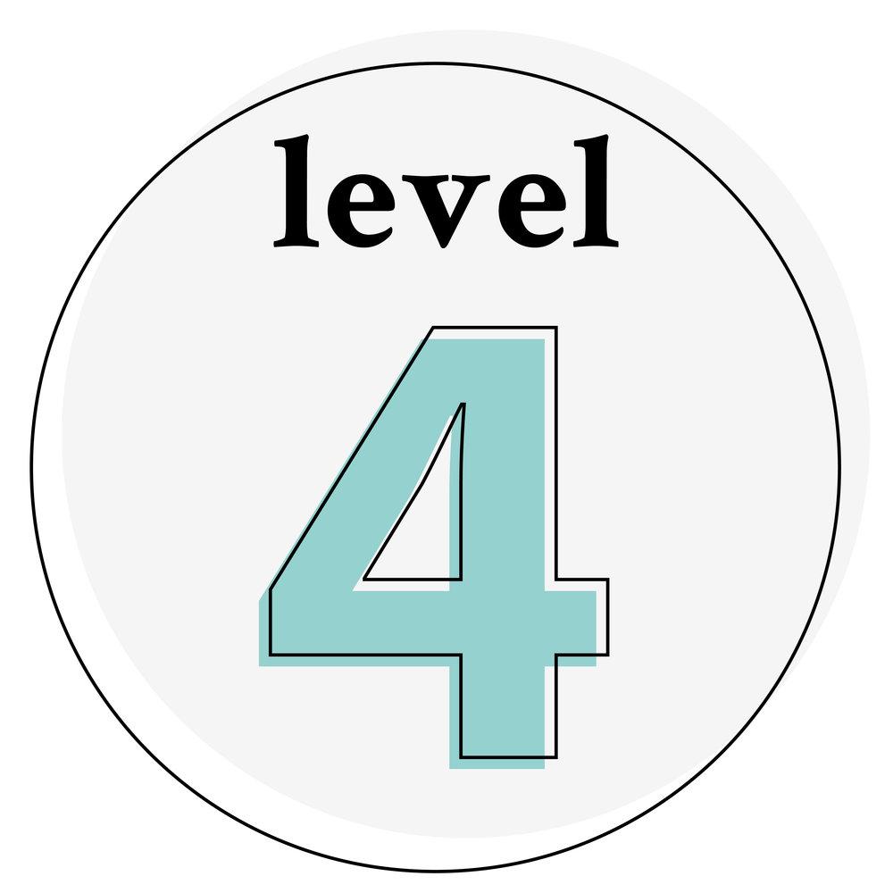 icon-level-4.jpg