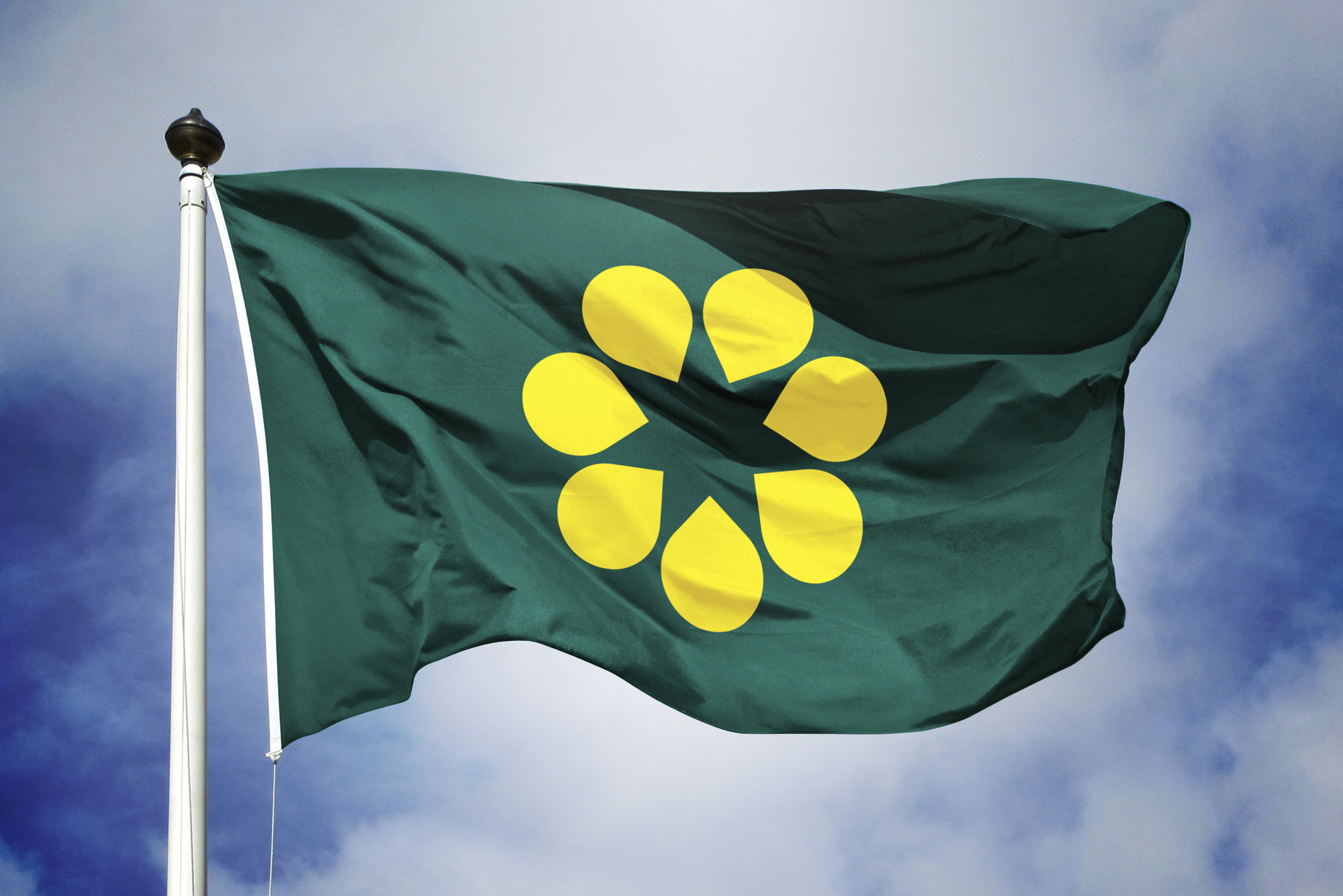 the golden wattle flag