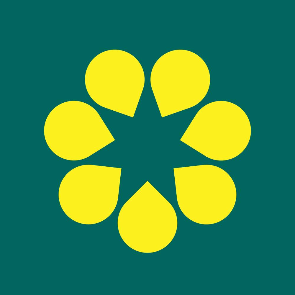 The golden wattle flag biocorpaavc
