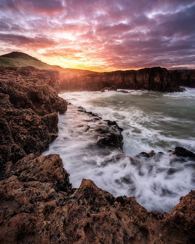 Last weekend I had the pleasure of visiting Phillip Island Nature Parks @phillipislandnp it was absolutely awesome to hang out with a handful of great people and learn a heap more about what they are doing around the island. Massive thanks to Phoebe from @phillipislandnp and everyone else involved. Can't wait to get back there soon. . Be sure to check out @phillipislandnp and if you haven't already make sure you head on down to Phillip Island. . #phillipislandnp #australia #phillipisland