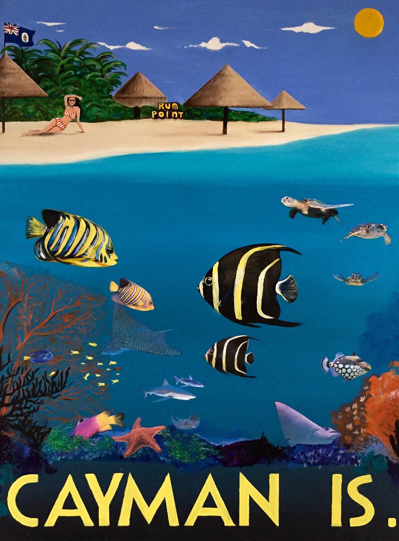 Cayman.2014.HDG.jpg