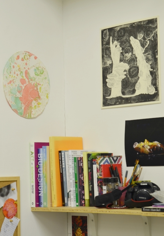 View of Mellissa Fisher's studio