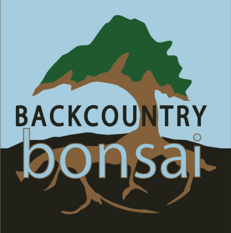 Backcountry   Bonsai