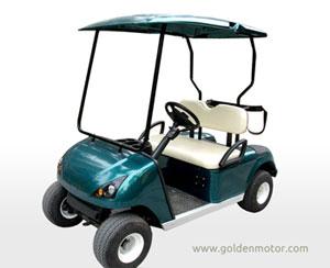 3 Kw Golden Motor Application Sample