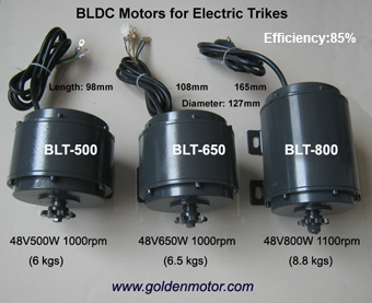 Light BLDC Electric Golden Motors Thailand